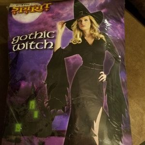Womens Halloween witch costume